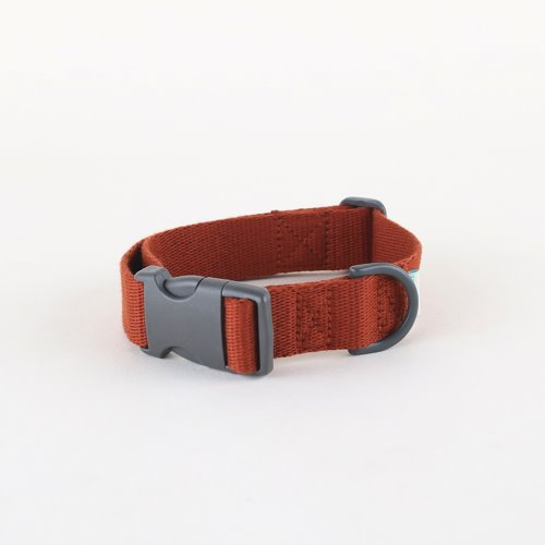Daily collar _ brick