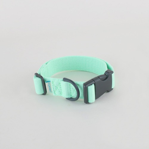 Daily collar _ Neo mint