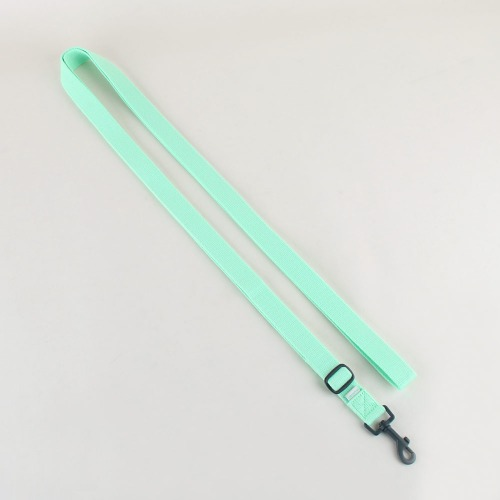 Daily leash _ Neo mint